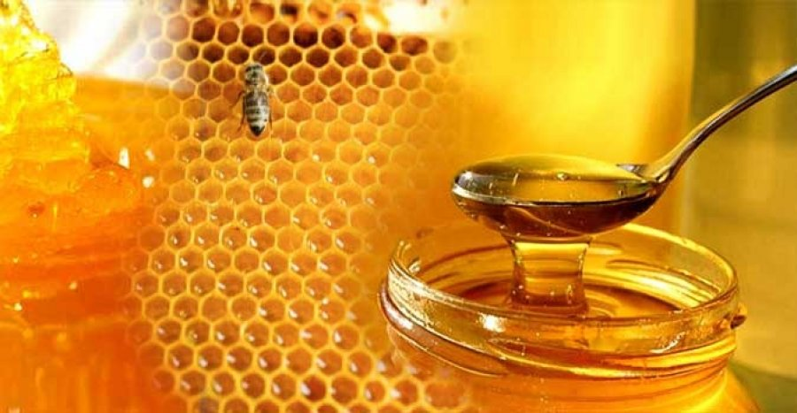 آمریکایی ها بزرگ ترین عسل خواران جهان