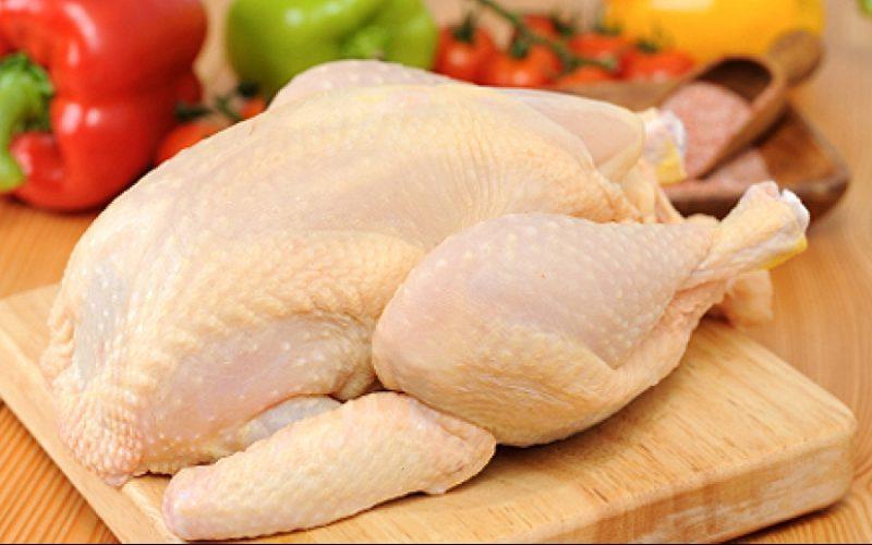 قیمت مرغ در روزهای آینده کاهش مییابد