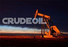 ۲۹ شرکت خارجی در لیست مناقصههای نفتی ایران