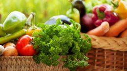 دولت از کشاورزی ارگانیک حمایت نمیکند