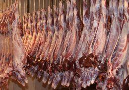 گوشت گوسفندی ارزان شد