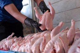 مرغ ۷۵۰۰ تومانی گران نیست