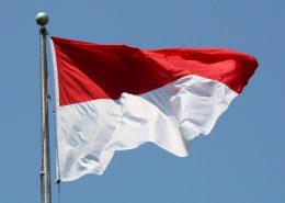برنامههای اندونزی برای توسعه بخش انرژی ایران