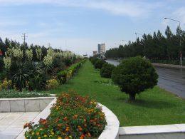 سرانه  فضای سبز منطقه ۲ شهرداری تهران ارتقا می یابد