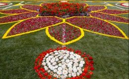 ده هزار متر مربع فرش گل زینت بخش منطقه دو