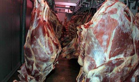 نیوزیلند صادرات گوشت به ایران را از سر میگیرد