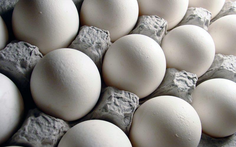 توزیع تخم مرغ دولتی به قیمت شانهای ۱۱ هزار و ۵۰۰ تومان
