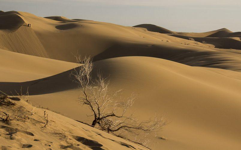 نفت در کویر استان سمنان کشف شد