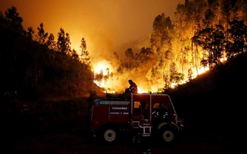 جنگلهای پرتغال همچنان میسوزد و قربانی میگیرد