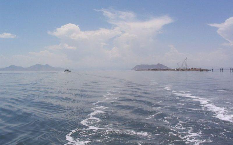 امکان حیات دوباره آرتمیا با بهبود نسبی وضع دریاچه ارومیه وجود دارد