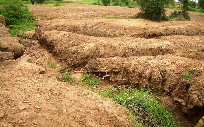 سالانه ۵۶ میلیارد دلار خسارت فرسایش خاکهای ایران