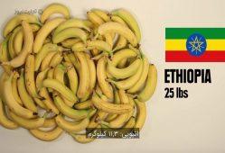 با 5 دلار در کشورهای جهان چه مواد غذایی میتوان خرید؟1-تجارتنیوز