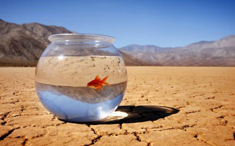 هشدار رشد گازهای گلخانهای و افزایش دما و تاثیر آن بر اقلیم دنیا