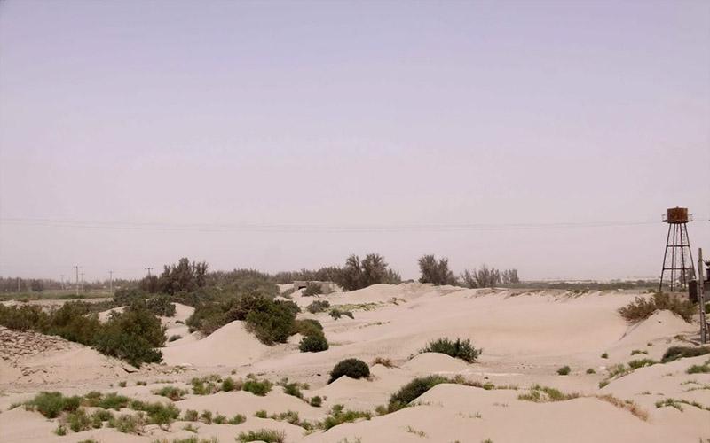 ۳۵ روستای شهرستان هیرمند در محاصره شنهای روان