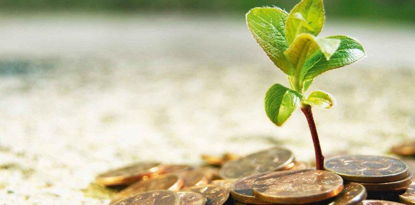 سرمایهگذاری جمعی رشد استارتآپ
