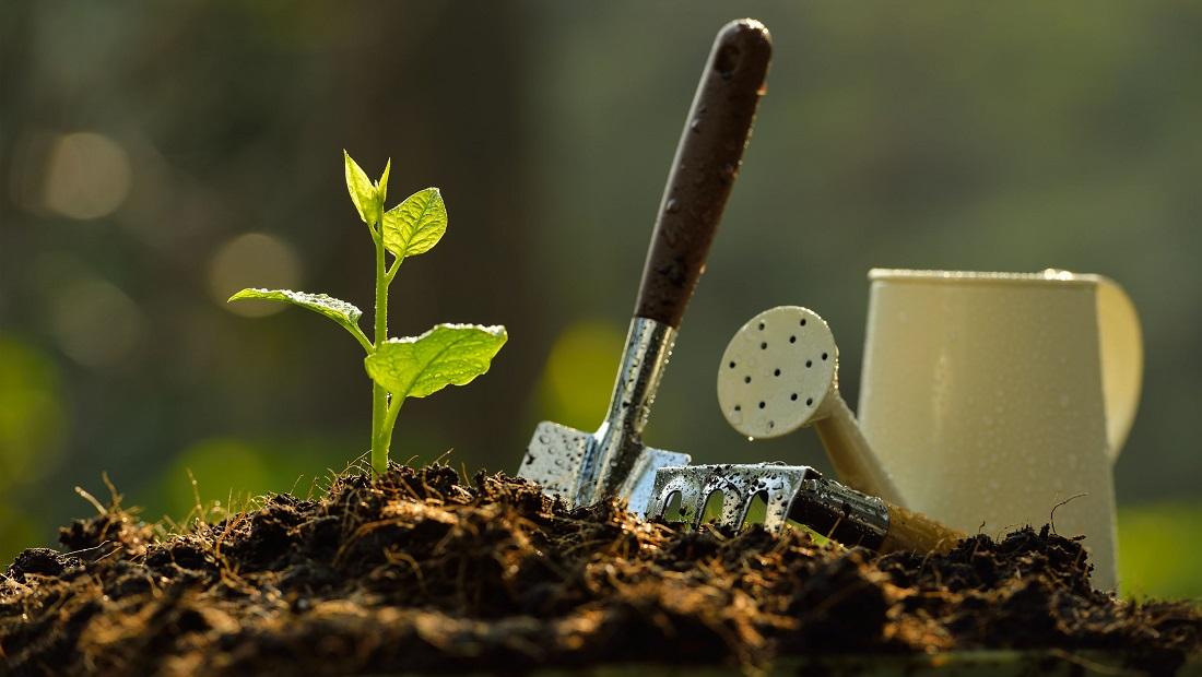 شتابدهنده استارتآپ و مرکز رشد