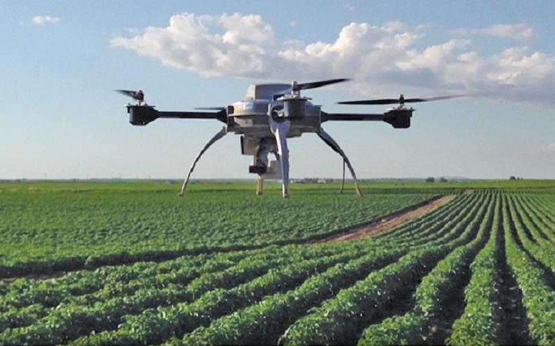 پرواز پهپادها در زمینهای کشاورزی بهمنظور افزایش راندمان