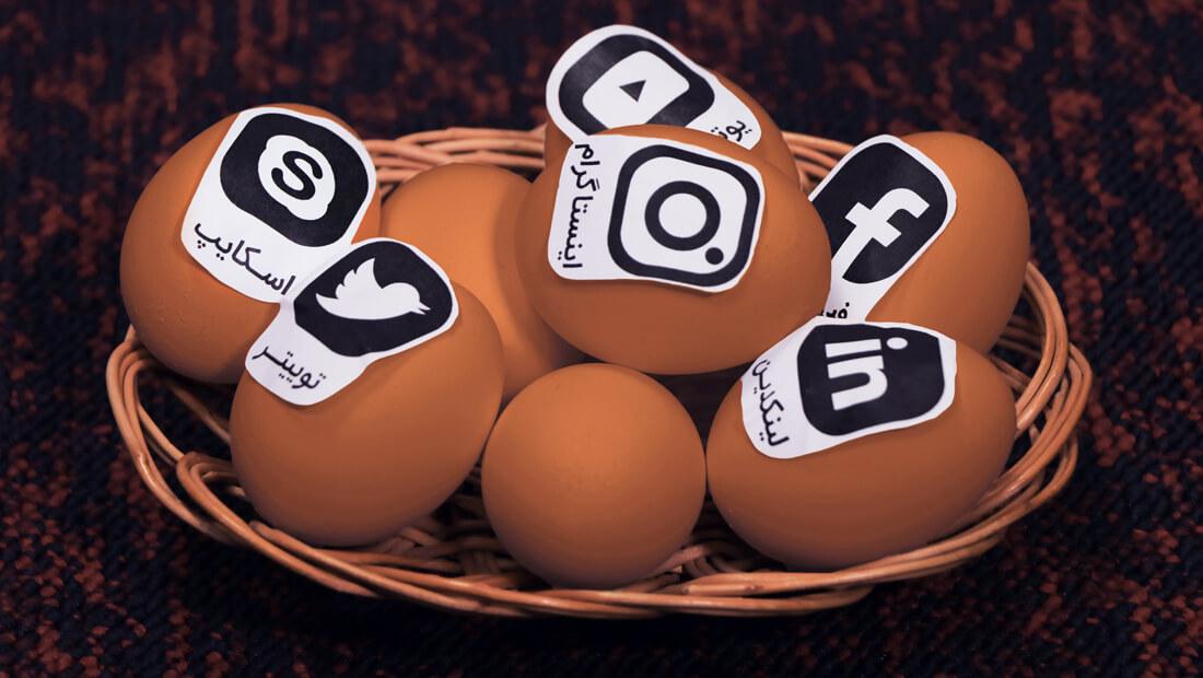 تخممرغ متنوعسازی متنوع کالا شبکه اجتماعی