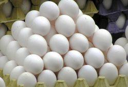تخم مرغ خوراکی
