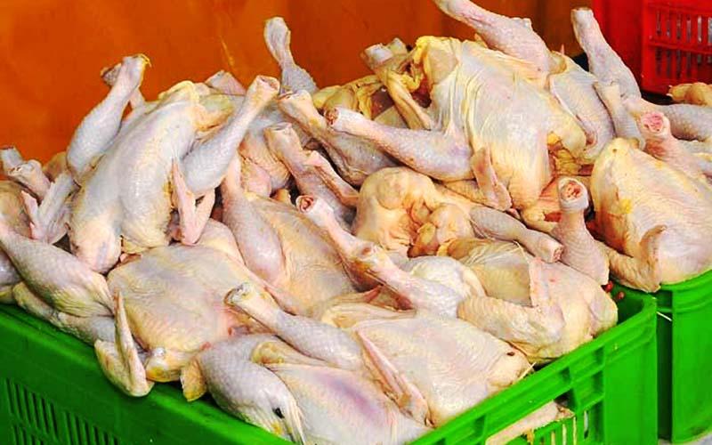 کاهش اندک قیمت مرغ