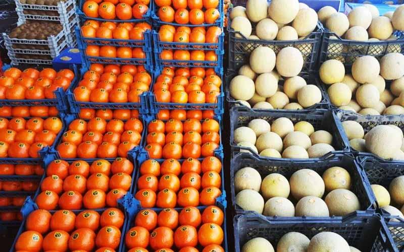 صادرات میوه و ترهبار از ۱۵ آبان فقط با بستهبندی استاندارد