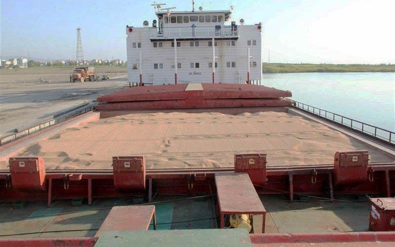 پیشبینی واردات ۳ میلیون تن گندم از سوی دولت