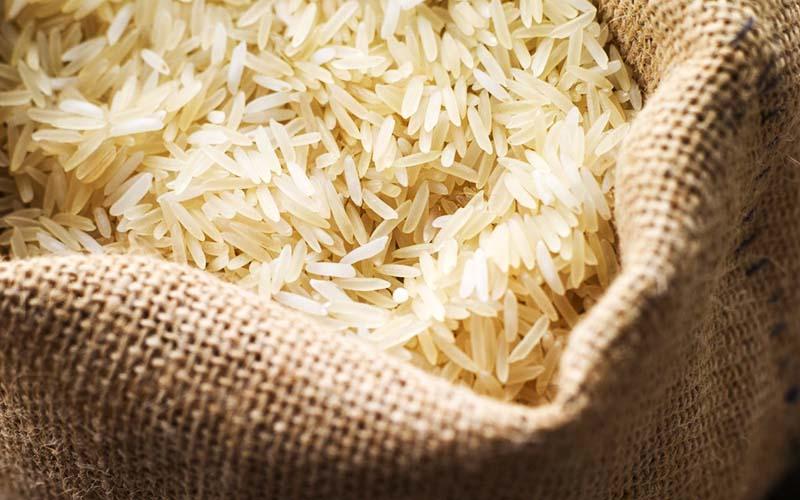 قیمت برنج تغییری نکرده است