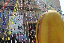 چهارمین جشنواره ملی پسته ایران