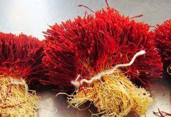 افزایش صادرات فلهای زعفران به کام رقبا