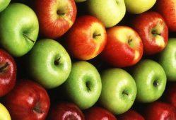 صادرات سیب با قیمت شش برابر ارزانتر از بازار داخلی