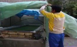 صفر تا صد پرورش ماهی گرمابی - تجارتنیوز