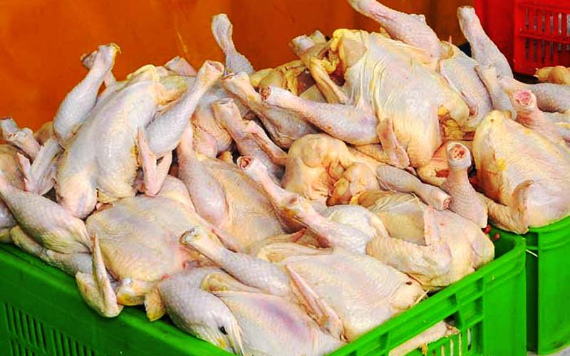 کاهش قیمت مرغ به ۷۹۰۰ تومان
