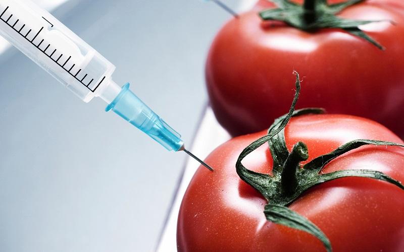 کشاورزی پایدار بهترین گزینه برای تامین غذای جهان