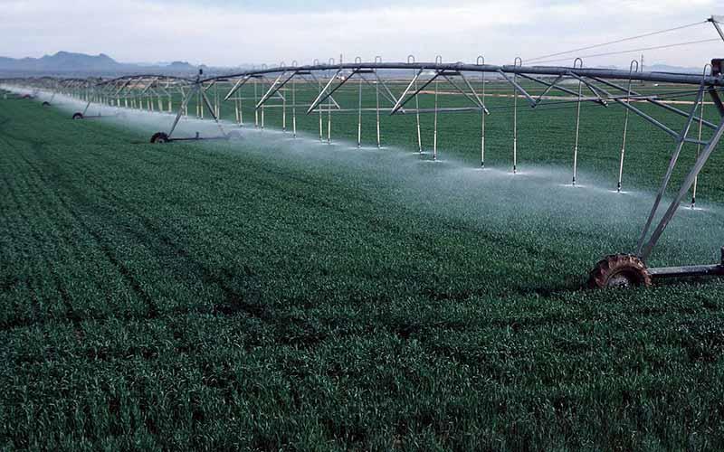 سامانه نوین آبیاری در سه هزار هکتار از اراضی کشاورزی گرمسار