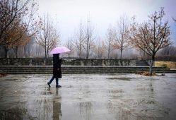 ۷.۲ میلیمتر بارش در ۱۵ روز آغازین سال آبی