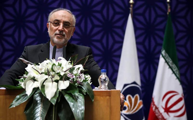 صالحی با رئیس آژانس بینالمللی انرژی اتمی دیدار کرد