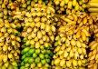 افزایش ۴۰ درصدی واردات موز در ۶ ماه نخست امسال