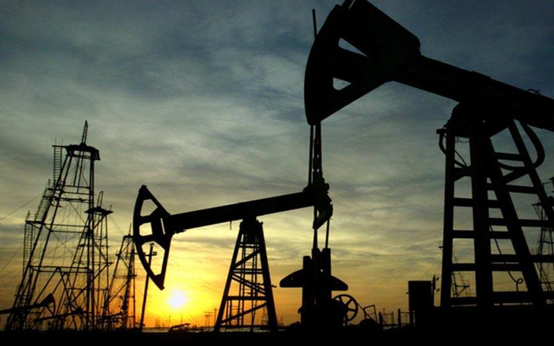 افزایش مجدد قیمت نفت