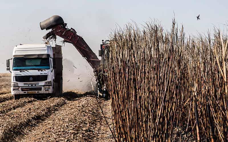 تحقیق و تفحص از شرکتهای نیشکر خوزستان و کارون رسما کلید خورد