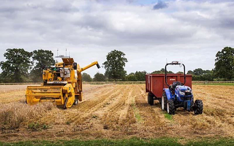 اجرای طرح حدنگاری در ۱ میلیون هکتار از اراضی کشاورزی