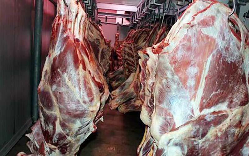 ثبات نسبی در بازار گوشت