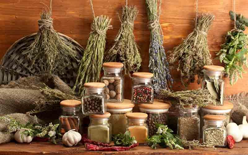 واردات گیاهان دارویی نظاممند میشود