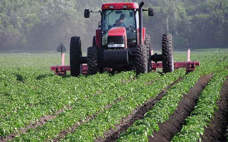 اُفت صادرات محصولات کشاورزی با نداشتن بستهبندی مناسب