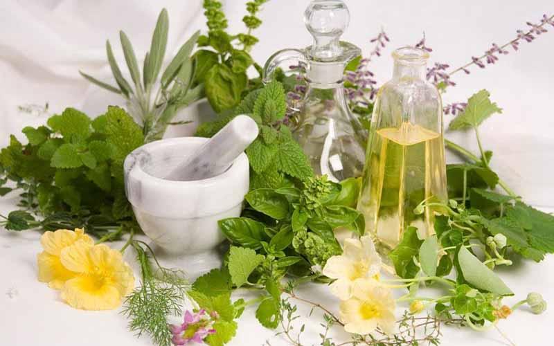تسهیلات جدید برای صادرات گیاهان دارویی