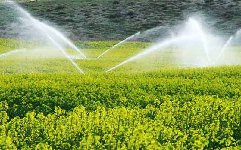 بهاندازه حجم 2 سد آب از کف دشت میامی میرود
