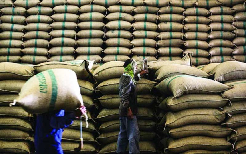 ۵۰۰ هزار تن برنج در انبار گمرکات رسوب شد / گلایه واردکنندگان برنج از بانک مرکزی