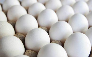 گرانفروشی ۲۰۰۰ تومانی هر شانه تخم مرغ