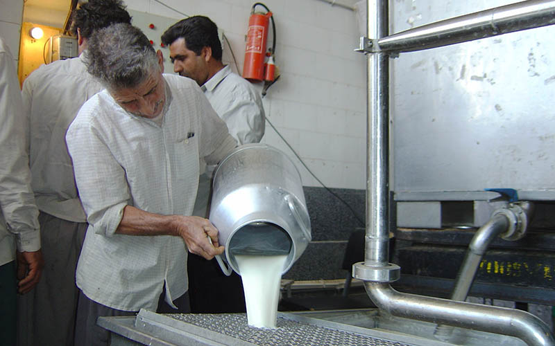 موفقیت خرید توافقی شیر خام در تنظیم بازار و تصحیح قیمت