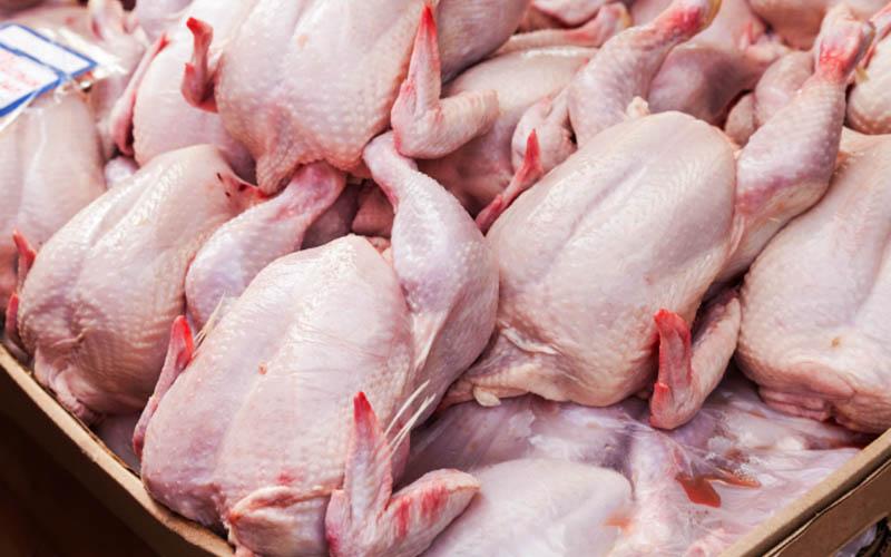کاهش ۱۰۰۰ تومانی قیمت مرغ