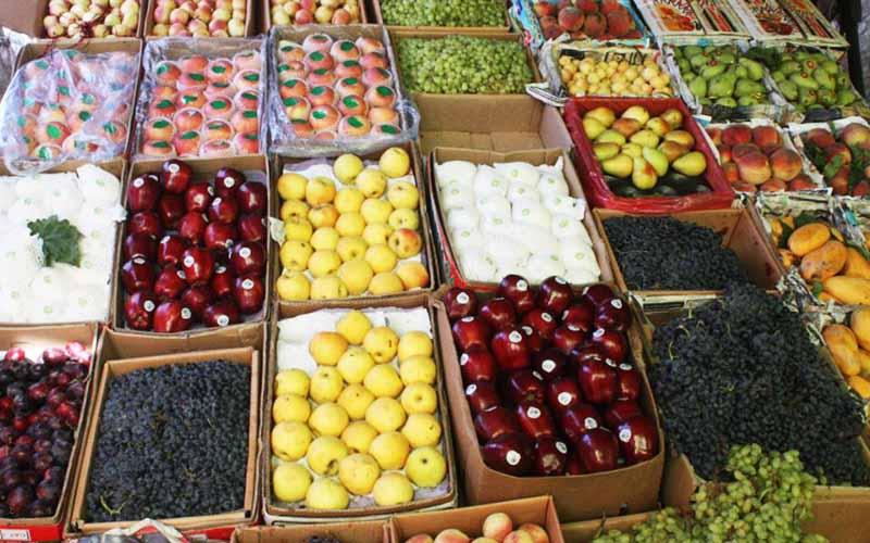 افزایش درآمد صادرات میوه و ترهبار